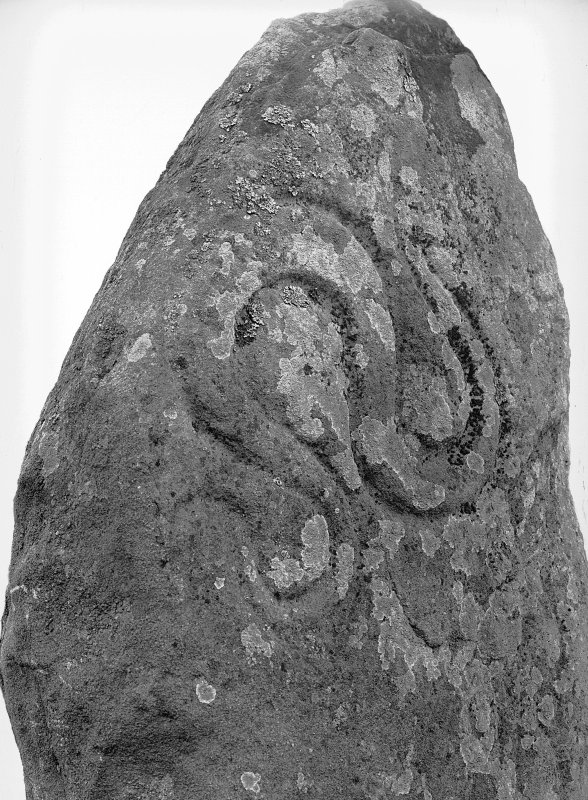 Detail of serpent symbol on Aberlemno no 1 Pictish symbol stone