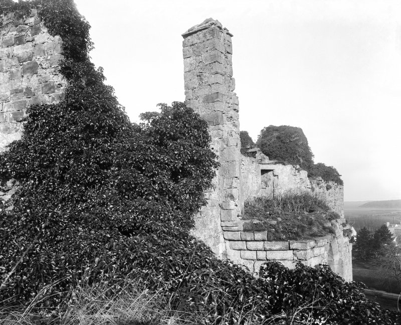 View of chimney covered in ivy.