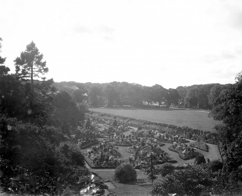 View of flowerbeds.