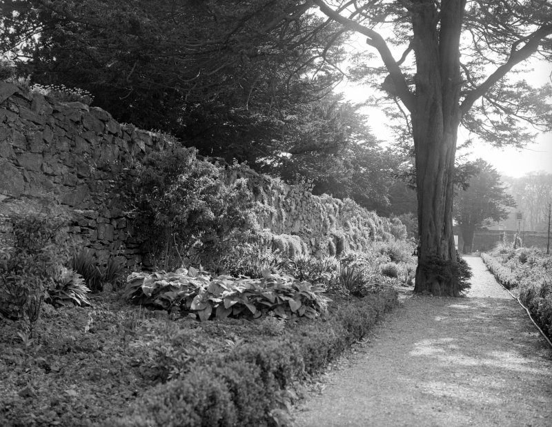 View of garden wall and flowerbeds.