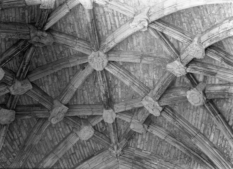 Interior. Detail of vaulted roof with bosses.