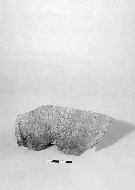 Finds Photograph: Bowl
