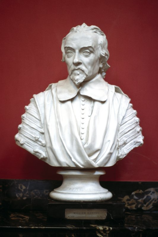 View of plaster bust of William Harvey by Peter Scheemakers, 1739, in the Hall.
