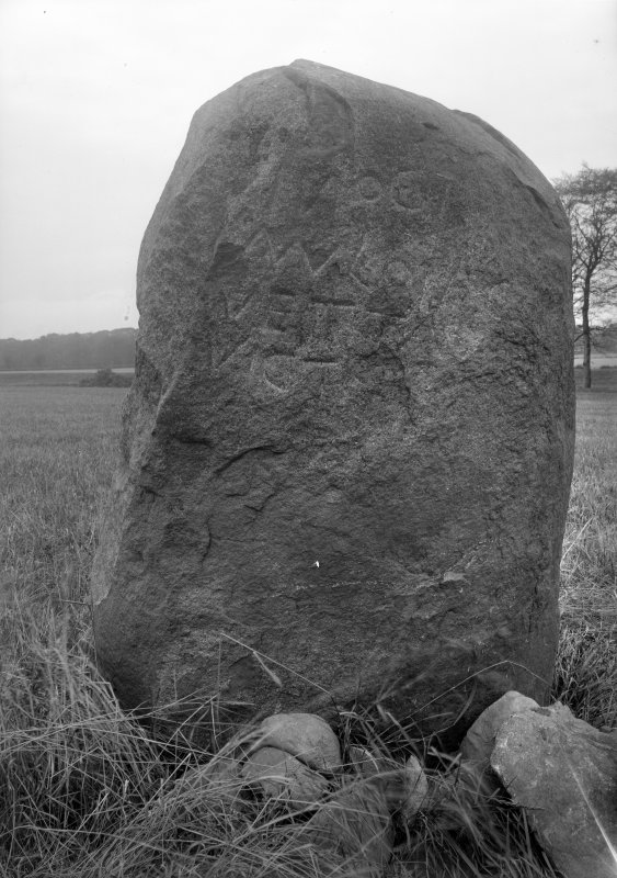 View of the Cat Stane.