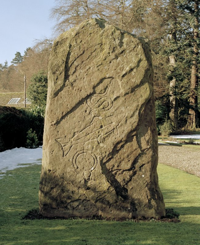 Pictish cross slab in Glamis manse garden, view of east (back) face (sunlight)