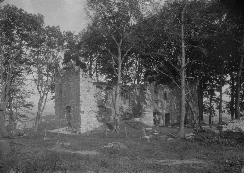 View of tower-house from the south showing structure before the removal of the trees.
