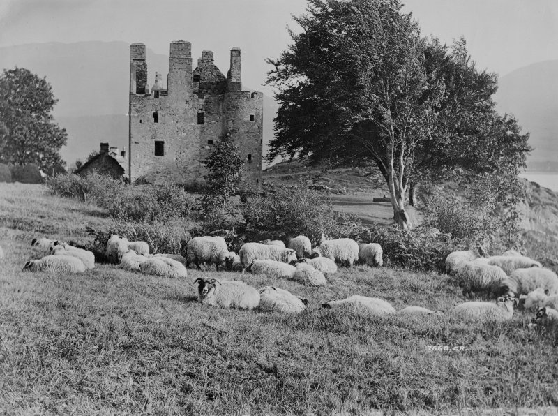 Dunderave Castle Pastoral view showing castle from North West, before restoration. Insc: '7660, CR' Copy on glass