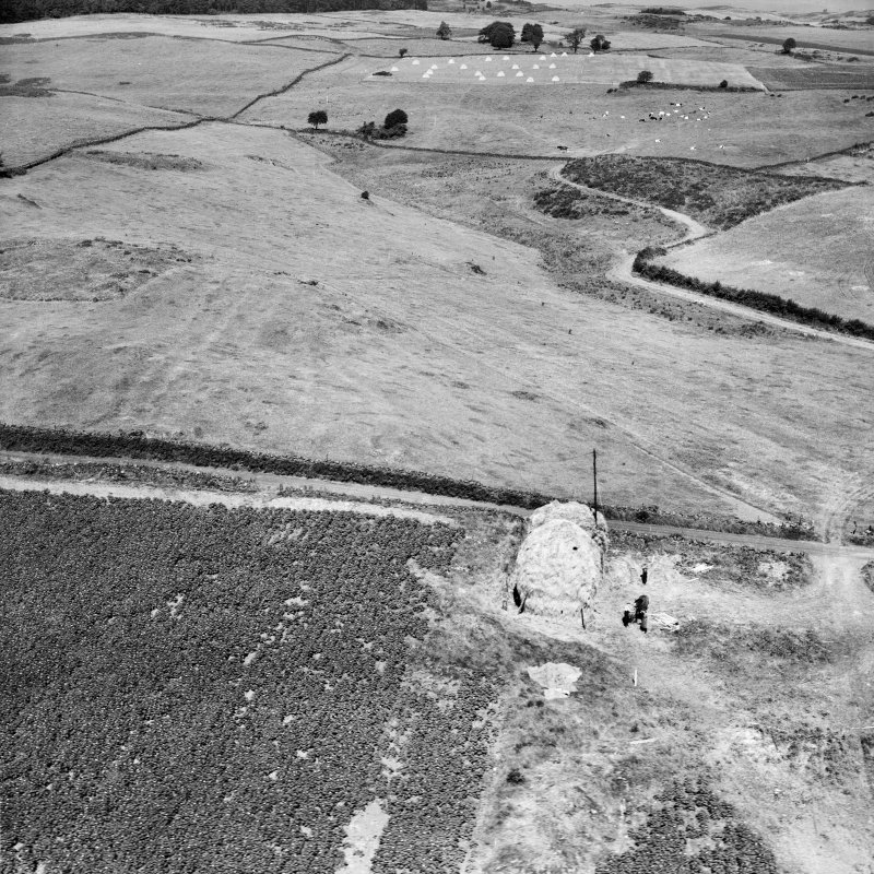 Unlocated image of haymaking, Dunbartonshire.  Oblique aerial photograph.