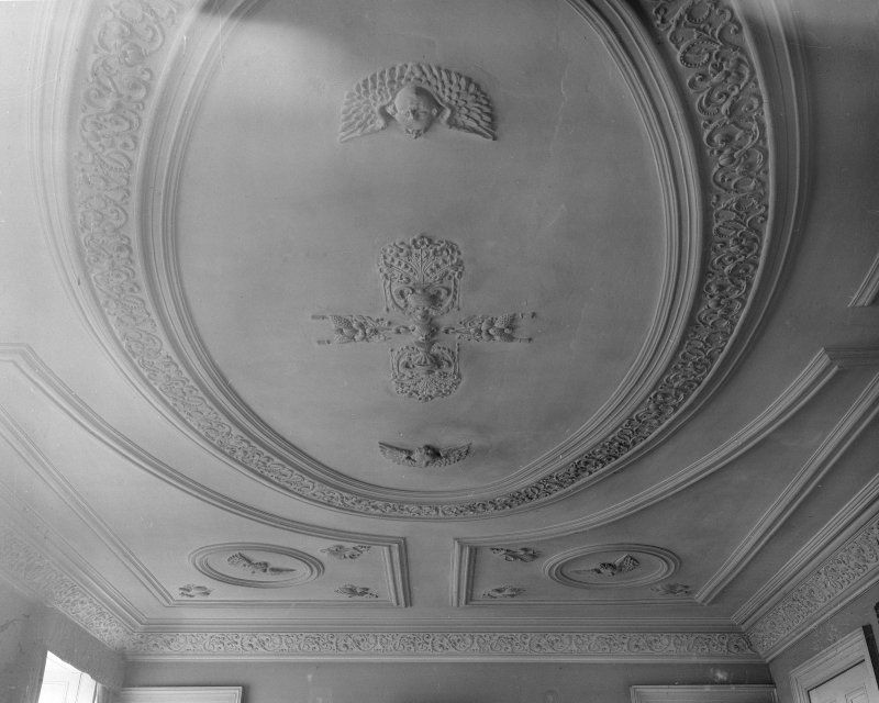 Detail of dining room ceiling