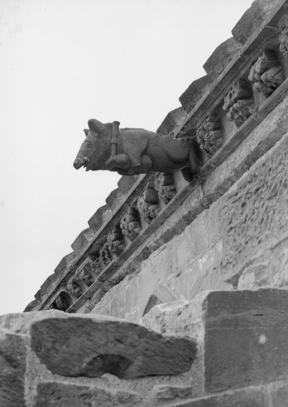 Detail of pig and bagpipes gargoyle.