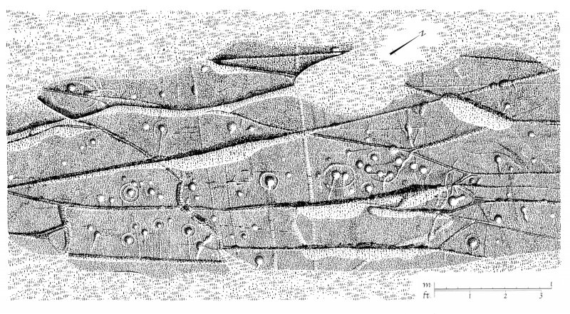 Publication drawing; cup and ring marked rock, Cairnbaan 1. Photographic copy.