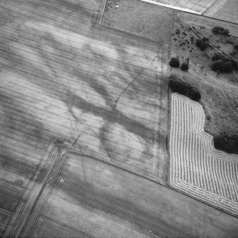 The Chesters, Drem, pit-alignment: oblique air photograph of cropmarks.