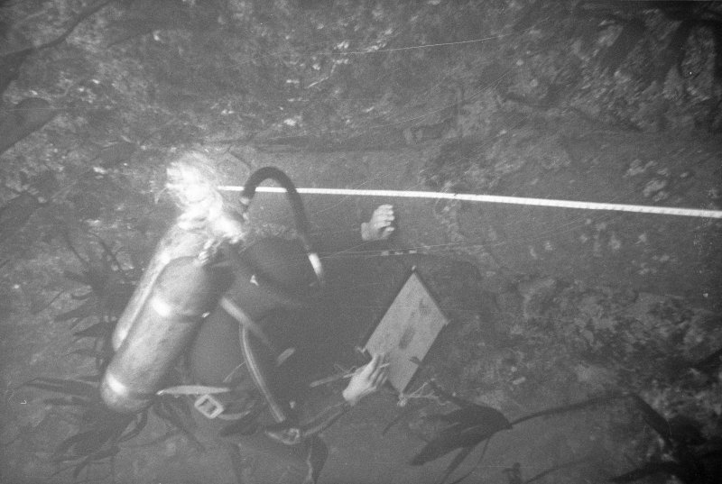 An archaeologist on the wreck-site recording in situ a cast-iron gun from which the concretion has been removed.