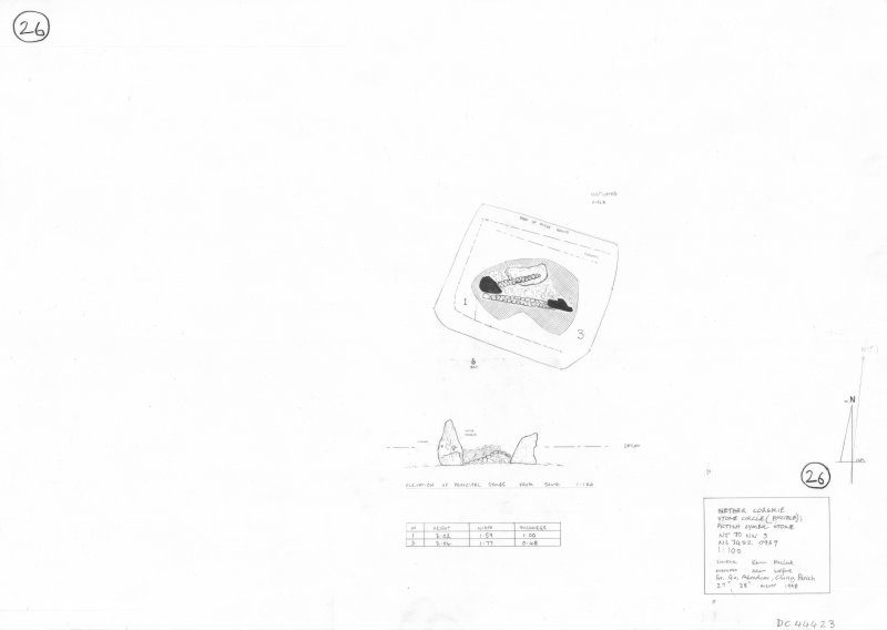 400dpi scan of site plan DC44423 - Plan and elevation of Nether Corskie Stone Circle