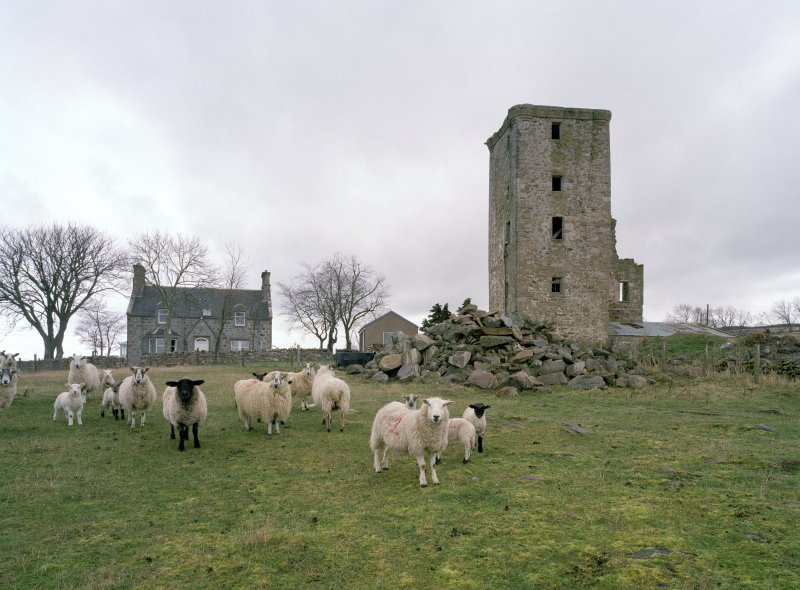 General view of tower and farmhouse from SW