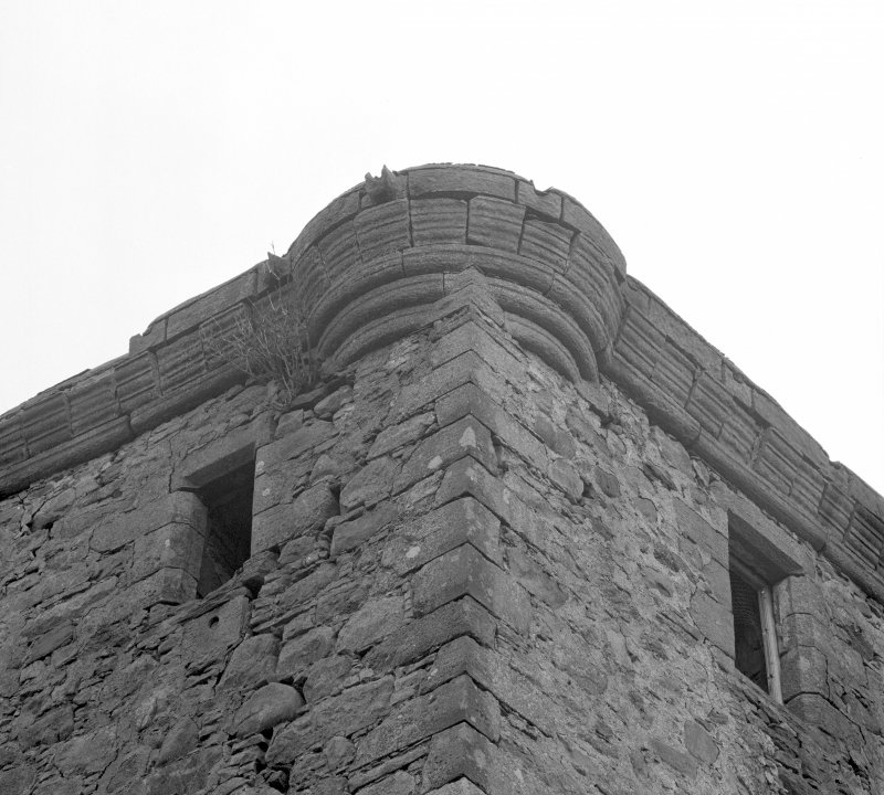Detail of parapet and bartizans