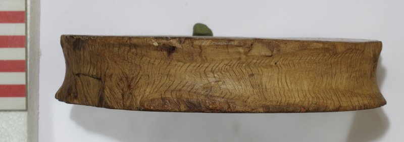 Side view of large hardwood sheave (pulley-wheel), cut from the heartwood centre across the grain (HXD 258). Scale in centimetres.