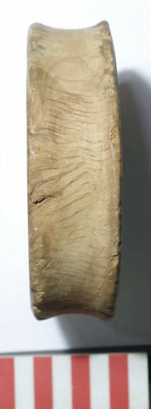 Side view of small hardwood sheave (pulley-wheel), cut from the heartwood centre across the grain. Scale in centimetres.