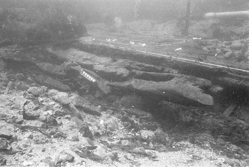Collapsed timbers from the upper port side of the hull, which have gathered in the trench dug into the substratum by the keel. The white string on the left indicates Section A-A. Note the was in which erosion has ground the inner surface of the curved hull to a flat surface. Scale 1 foot.