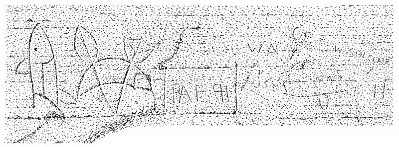 Scanned ink drawing of Pictish symbols (salmon, crescent & V-rod, salmon) in Sculptor's Cave