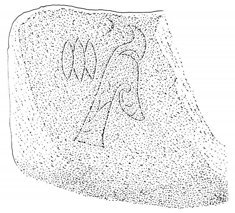 Scanned ink drawing of Pictish symbols (triple oval, flower) in Sculptor's Cave