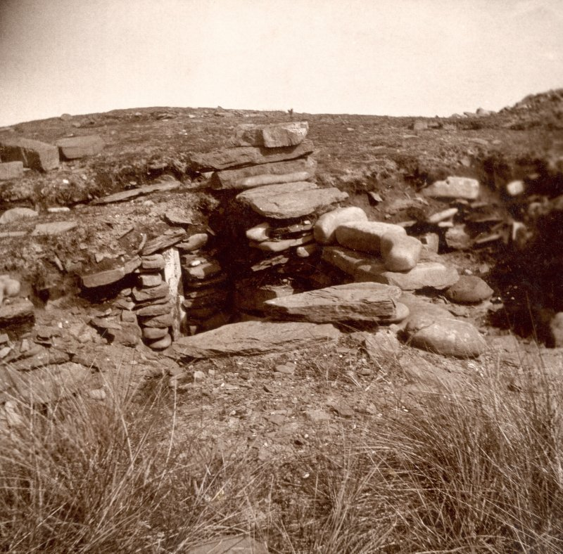 Photograph of part of a Broch, stones and vegetation