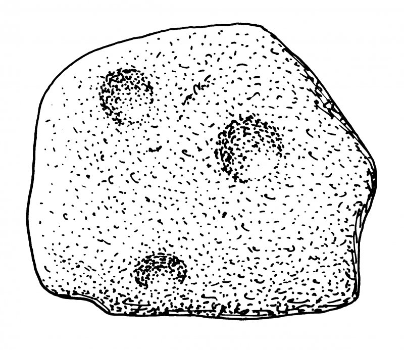 Scanned ink drawing of Kirkmadrine 10 carved stone