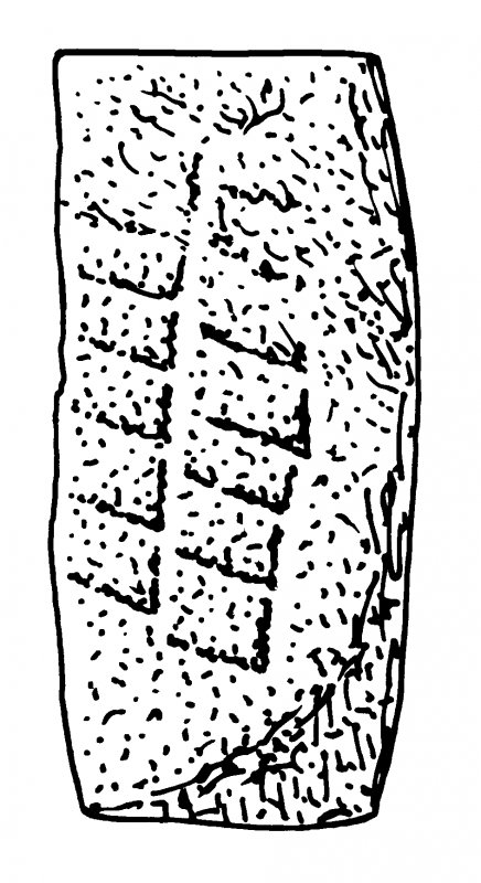 Scanned ink drawing of Pictish stone fragement built into S wall of St Vigeans Church