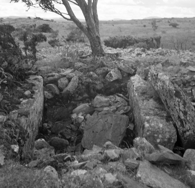 Essich Moor, chamber in north cairn from north.