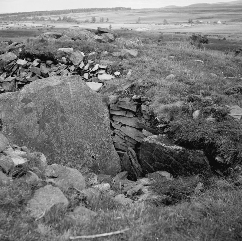 Essich moor, south cairn from west.