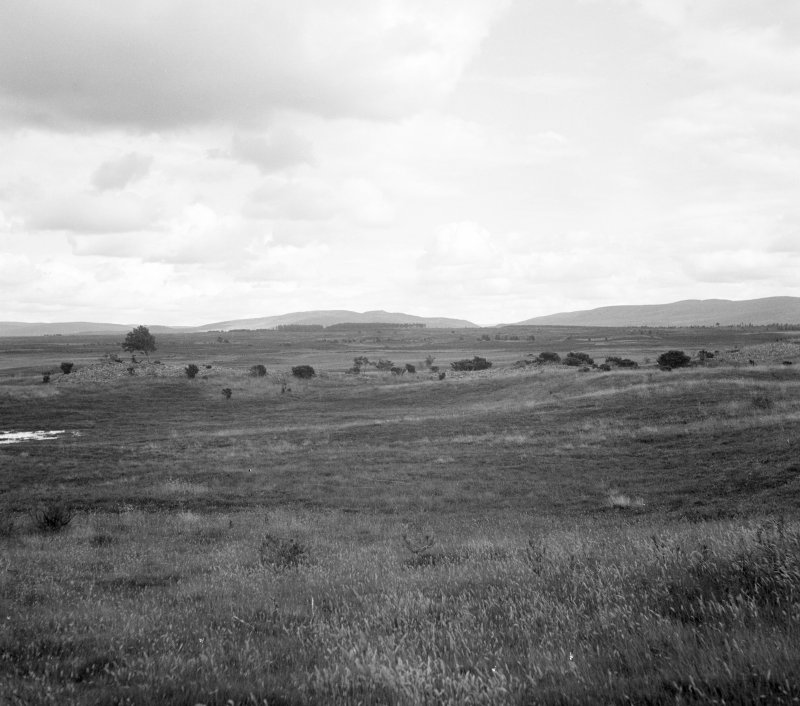 Cairns on Essich Moor, general view.