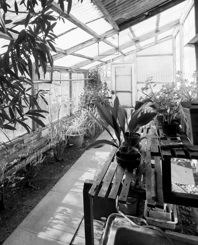 Interior view of green house from E