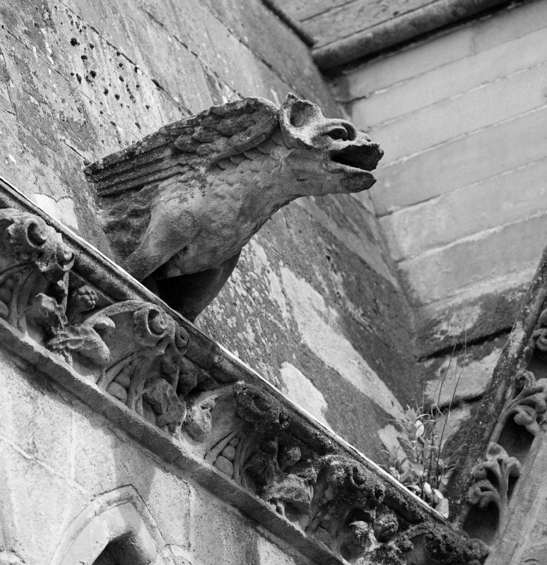 Detail of gargoyle
