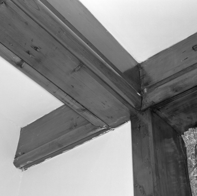 Interior. Ground floor Common room Detail of roof beams
