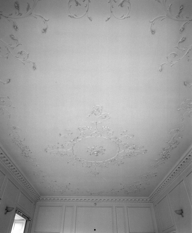 Interior, detail of drawing room rococo ceiling