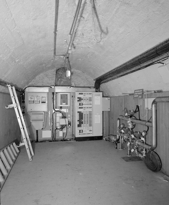 Interior. Basement. View of S wing vaulted store from N showing new electrics
