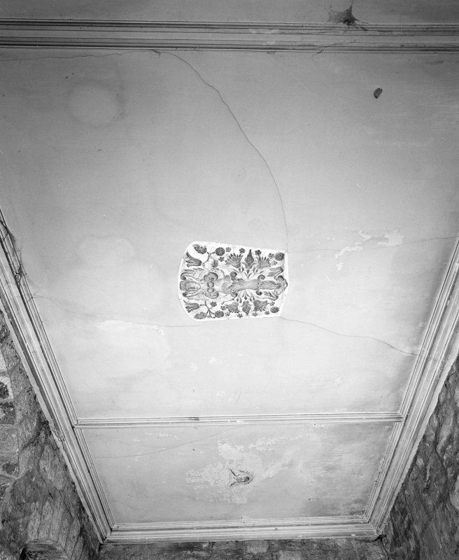 Summer House Interior.  detail of plaster ceiling