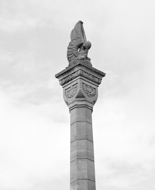 Detail from S showing upper shaft of column surmounted by pelican symbolizing sacrifice