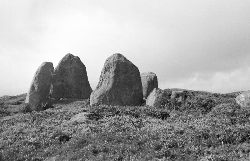 Heights of Brae, main cist and stones D and E from south east.