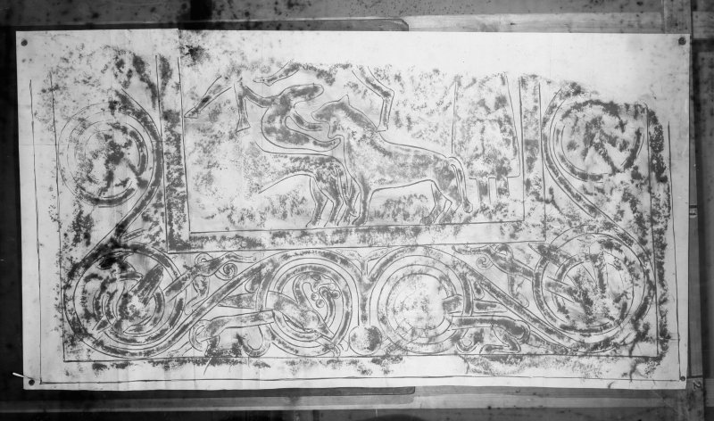 Photographic copy of rubbing showing fragment of Tarbat no.1 cross slab, Tarbat Parish Church. The fragment is now in the National Museum of Scotland, X.IB 190.