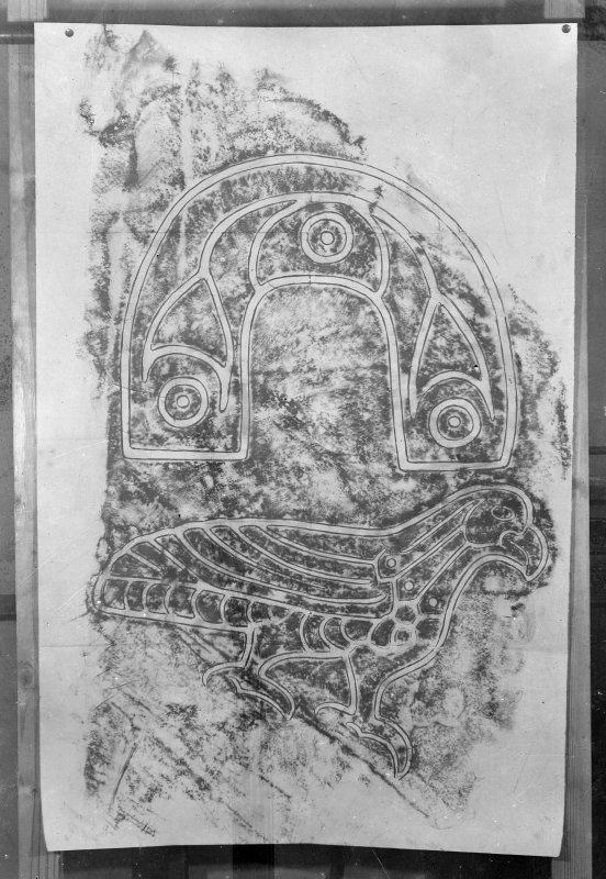 Photographic copy of rubbing showing detail of face of the Eagle Stone, Clachan Tiumpan, Strathpeffer.