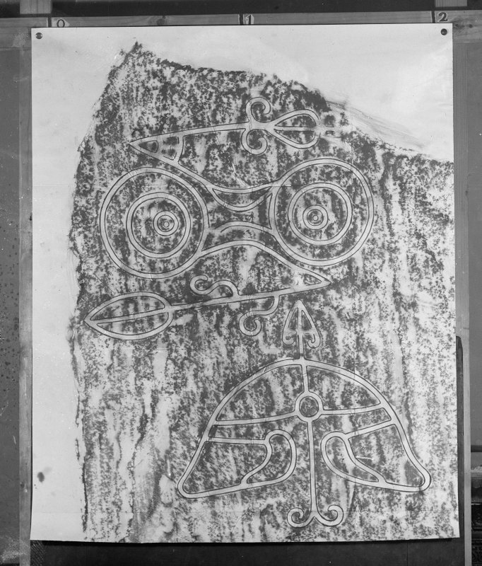 Photographic copy of rubbing showing detail of Congash no.2 Pictish symbol stone, Parc-an-caipel, Congash.