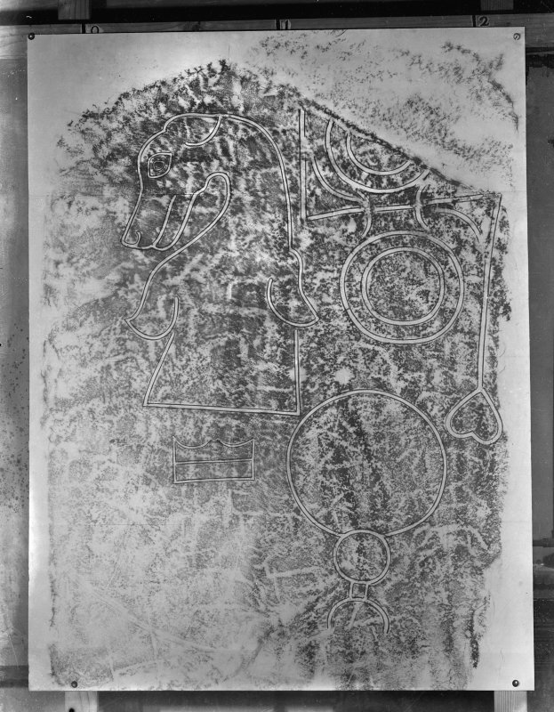 Photographic copy of rubbing showing face detail of Rhynie no.5 Pictish symbol stone, St. Luag's Churchyard, Rhynie.