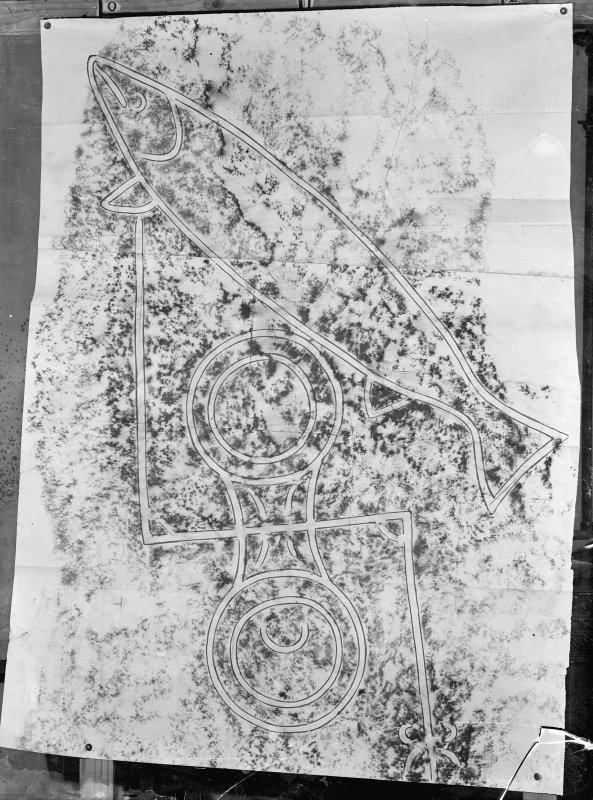 Photographic copy of rubbing showing detail of the face of Clach Biorach Pictish symbol stone, Edderton.