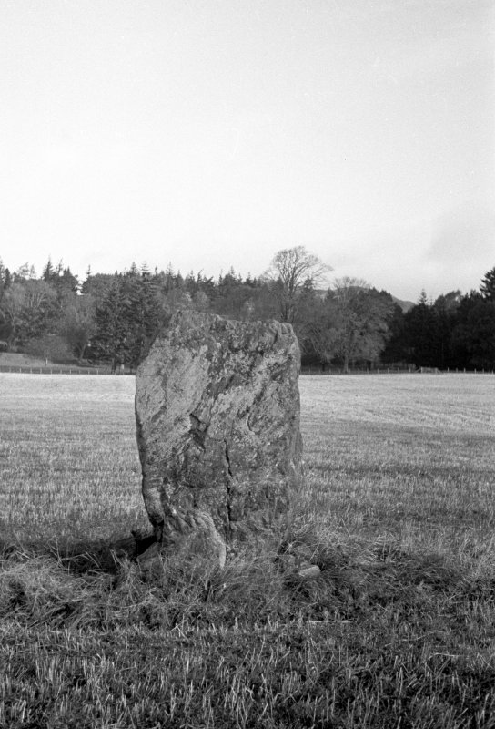 The Danes Stone from the south.