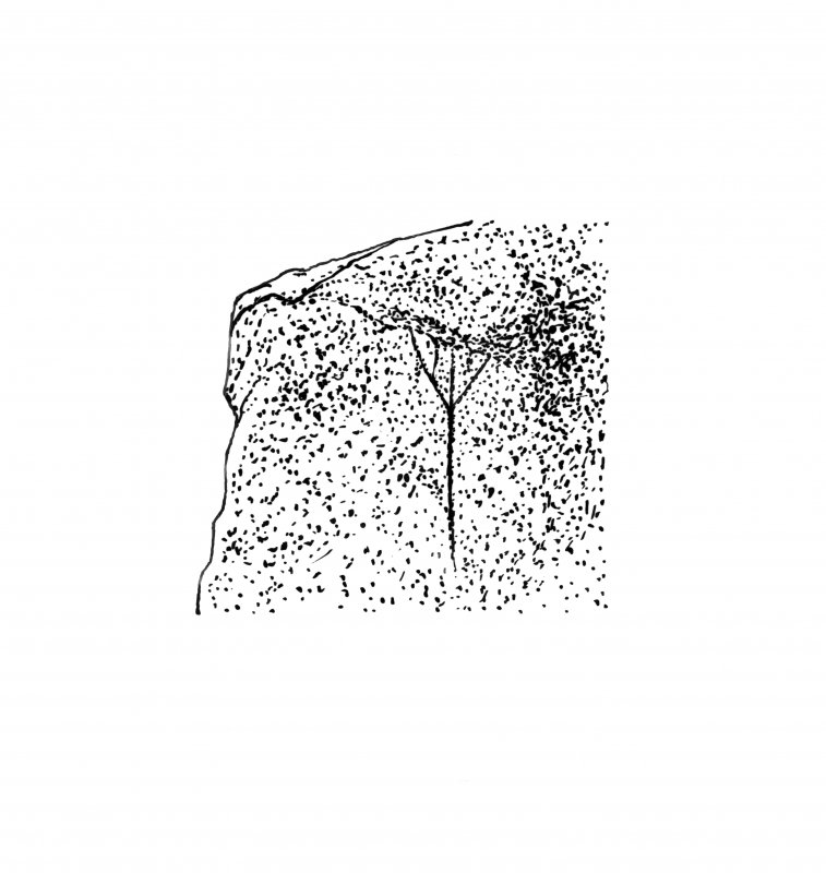 Publication drawing; 'fir tree' incised design on capstone, Carn Ban, Cairnbaan. Photographic copy.