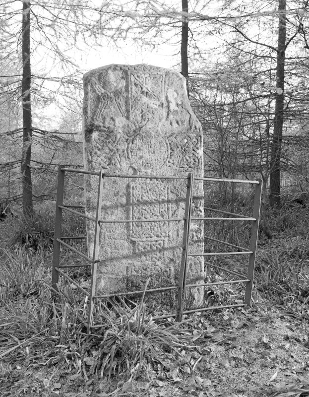 View of face of Thornton Pictish cross slab, Hunters Hill.