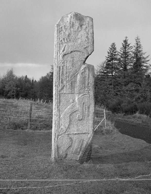 View of reverse of Maiden Stone Pictish cross slab.