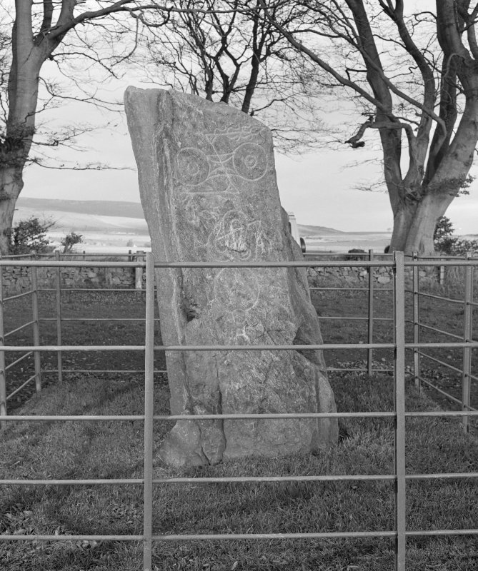 View of face of Picardy Pictish symbol stone, Myreton Farm.