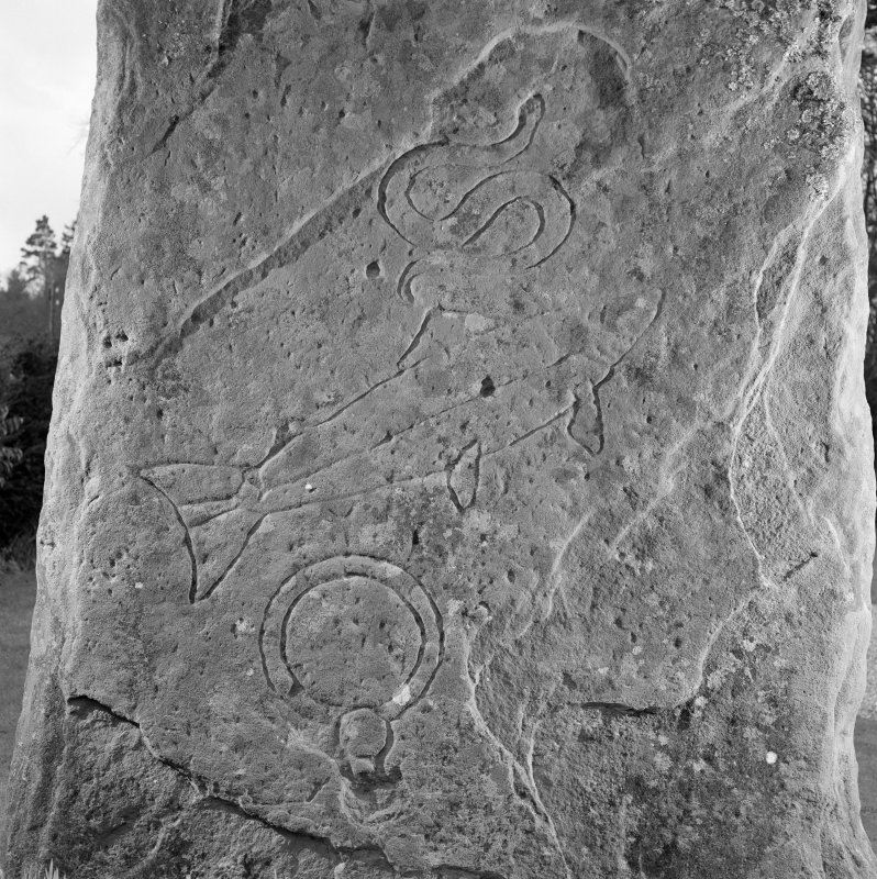 Back detail of Glamis Pictish cross slab.